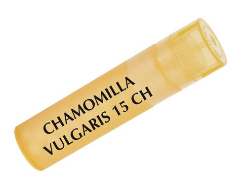 Chamomilla vulg. gr     15ch boiron